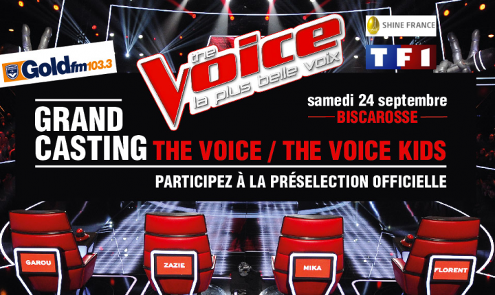 CASTING THE VOICE